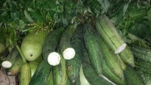 fresh produce:-)