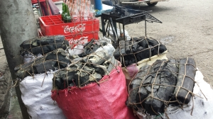 Where there are seafoods, there are charcoals...best grillmates:-)