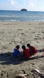 Not sure what were the boys was doing....picking shells or harassing the crabs:-)